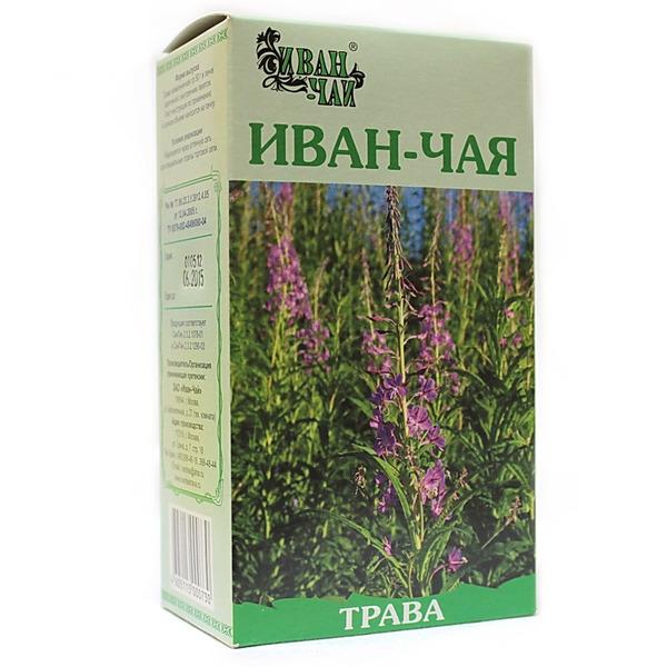 Трава иван чай какой из себя